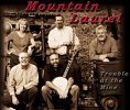 Mountain Laurel Band